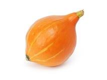 Ripe small pumpkin Royalty Free Stock Photo