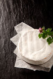 Ripe soft creamy round of Camembert cheese Royalty Free Stock Photo