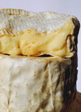 Ripe soft french cheeses Stock Photos
