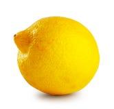 Ripe sour lemon Stock Image