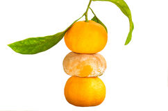 Ripe and spoiled Clementine. Stack of a Ripe and spoiled Clementine Stock Photos
