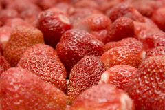 The ripe strawberries_1 Royalty Free Stock Photography