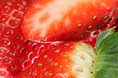 Ripe strawberries. Stock Images