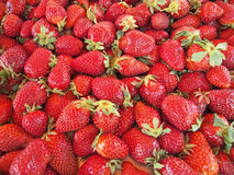 Ripe strawberries. Pile of appetizing ripe strawberries royalty free stock photos