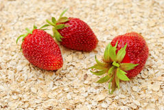Ripe strawberries on background of dry oat Royalty Free Stock Image
