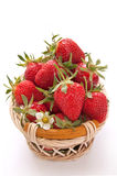 Ripe strawberries in the basket Royalty Free Stock Photos