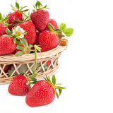 Ripe strawberries in the basket Stock Images