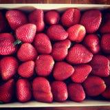 Ripe strawberries. Beautiful ripe organic strawberries in a box Royalty Free Stock Photography
