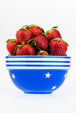 Ripe strawberries in a blue and white bowl isolated on a white b Royalty Free Stock Photo