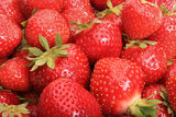 Ripe strawberries in bulk Stock Photos