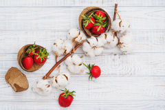 Ripe strawberries and cotton flowers. Natural still life with ripe strawberries and cotton flowers, top view Stock Images