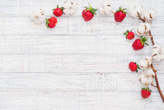 Ripe strawberries and cotton flowers. Natural still life with ripe strawberries and cotton flowers, top view Stock Photos