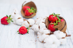 Ripe strawberries and cotton flowers. Natural still life with ripe strawberries and cotton flowers, top view Royalty Free Stock Photo
