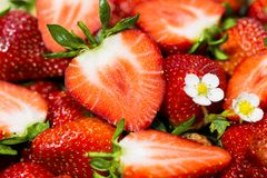 Ripe strawberries - cut and whole stock photos