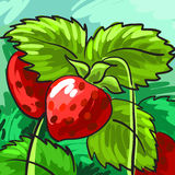 Ripe strawberries on a green background for your design. Card. Vector Royalty Free Stock Photography