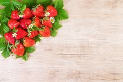 Ripe strawberries with leaf on brown bright background. Text space, top view stock photography