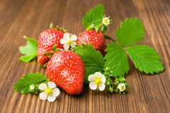 Ripe strawberries with leaves and blooms Stock Photos