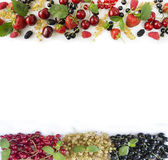 Ripe strawberries, redcurrants, blackcurrants, mulberries, raspberries and cherries on white background. Royalty Free Stock Photo