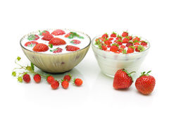 Ripe strawberries and strawberry milk on a white background Stock Photography