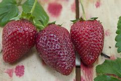 Ripe strawberries on a table Royalty Free Stock Photography