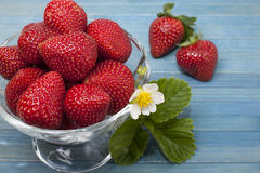 Ripe strawberries. In a vase on a blue background Royalty Free Stock Photography