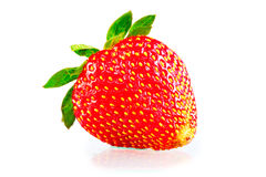 Ripe strawberries on a white background Royalty Free Stock Photography