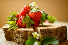 Ripe strawberries on wood. Ripe red strawberries on wood Stock Photography
