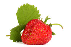 Ripe strawberry. With leaf on white background Royalty Free Stock Photos