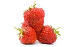 A ripe strawberry Stock Photo