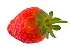 Ripe strawberry Royalty Free Stock Photography