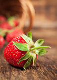 Ripe strawberry close-up Stock Image