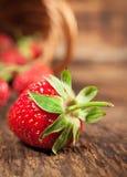 Ripe strawberry close-up Stock Image