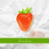 Ripe strawberry Stock Photography