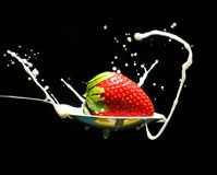 Ripe strawberry drops in a spoon Stock Images