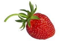 Ripe strawberry. Stock Image