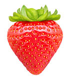 Ripe strawberry isolated on white background. Clipping path Stock Photography