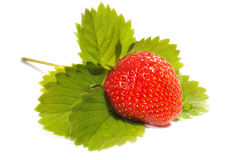 Ripe strawberry and leaf Stock Images