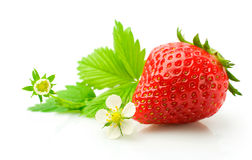 Ripe strawberry with leaves and flowers Stock Photo
