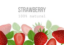 Ripe Strawberry poster. 100 percent natural. berries at the bottom Royalty Free Stock Photos