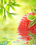 Ripe strawberry reflected in water Royalty Free Stock Photography