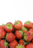 Ripe Strawberry's. Shot against a plain background Royalty Free Stock Photos