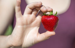 Ripe strawberry in shape of heart holding by young woman Stock Photography
