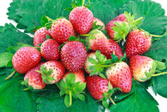 Ripe strawberry Royalty Free Stock Images