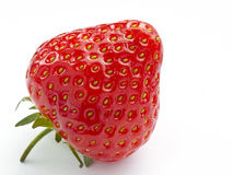 Ripe strawberry on white Stock Images