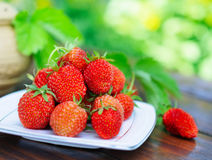 Ripe strawberry on a white plate. Stock Images