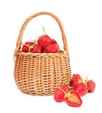 Ripe strawberry in wicker basket Royalty Free Stock Photography