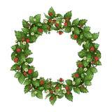 Ripe strawberry wreath Stock Photo