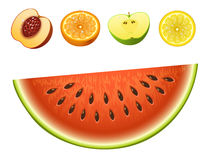 Ripe striped watermelon realistic juicy fruits slice apple vector illustration slice green isolated ripe melon. Ripe striped watermelon fruits slice realistic Royalty Free Stock Images