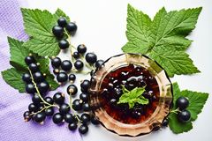 Ripe,sweet black currant and tasty jam. Ripe,sweet black currant and tasty jam on white background royalty free stock images