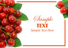Ripe sweet cherries with copy space Stock Photos